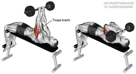 incline bench skull crushers decline skull crusher exercise guide and video weight