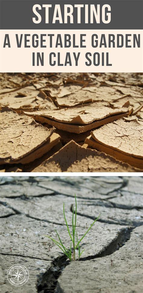 Starting A Garden by Starting A Vegetable Garden In Clay Soil