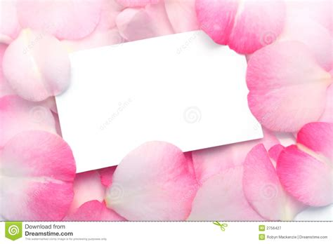 Free Pink Gift Cards - gift card and pink petals royalty free stock photography image 2756427