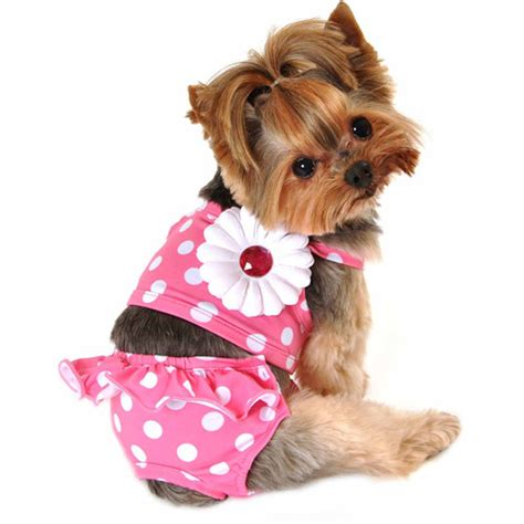 dogs walmart simply pink dot swimming suit dogs walmart