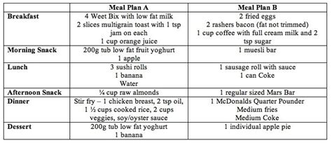 weight loss nutrition plan nutrition plan for weight loss free nutrition plan for