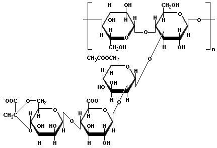 carbohydrates in xanthan gum estructura de carbohidratos todosobrecarbohidratos