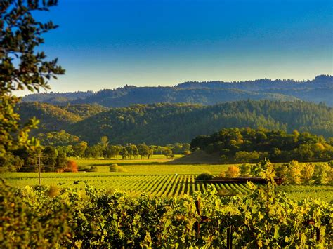 Photo Napa Valley where to play stay and taste in napa valley travel