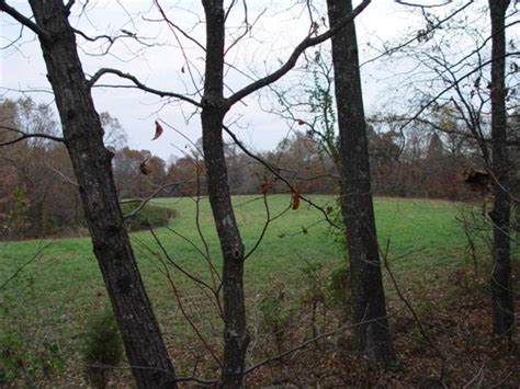 houses for sale in graves county ky homes for sale in graves county ky homes land 174