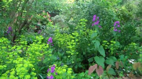 Backyard Flower Gardens The Woodland Garden In Full Bloom April 2010 Youtube
