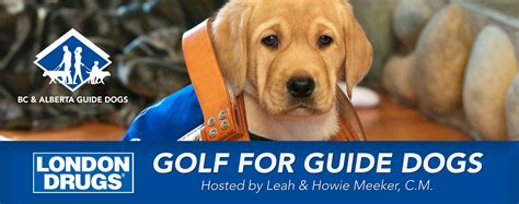 annual for dogs drugs 19th annual golf for guide dogs bc and alberta guide dogs