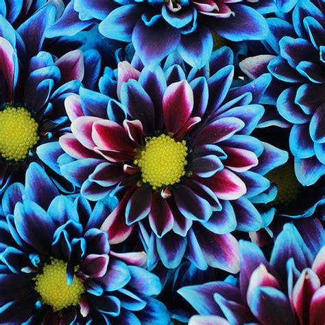 wedding flowers wedding centerpieces flowers arrangement
