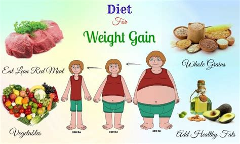 best diet top 18 best diet tips for weight gain you should
