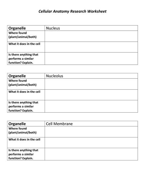 Career Research Worksheet by 13 Best Images Of Animal Research Worksheet Animal
