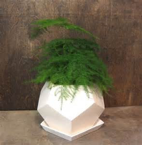 geo planter small white by mgmy studio modern indoor