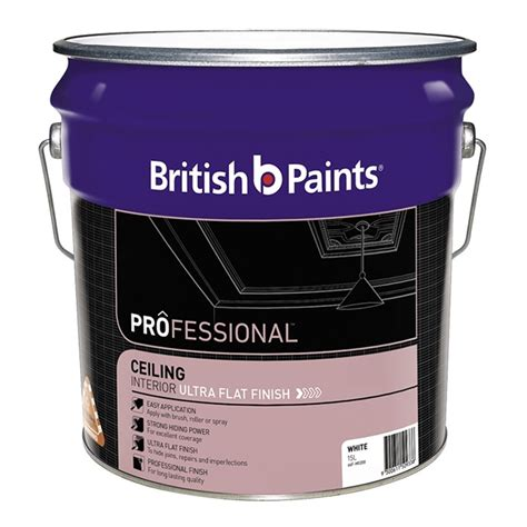 Flat White Ceiling Paint by Paints Professional 15l White Ultra Flat Ceiling