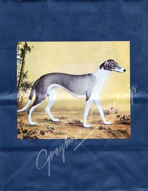 Greyhound Gift Card - 153 best images about greyt vintage and modern postcards on pinterest cards lady
