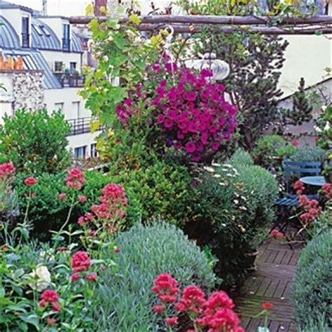 terrazze in fiore piante da esterno piante da balcone e da terrazza