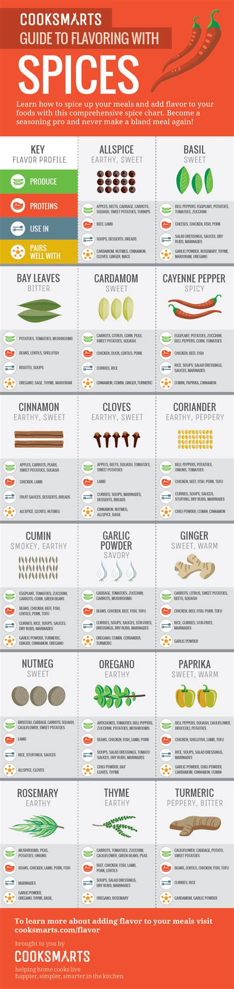 spice herb kitchen chart by amalgamarts on etsy the ultimate infographic guide to spices cook smarts