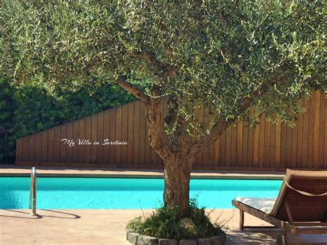 affitto sardegna sul mare villa con piscina in affitto in sardegna spettacolare