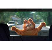 Garfield Flat Against Car Window Wallpaper 1280&215800