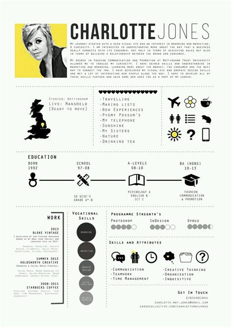 creative infographic resume design the of programming