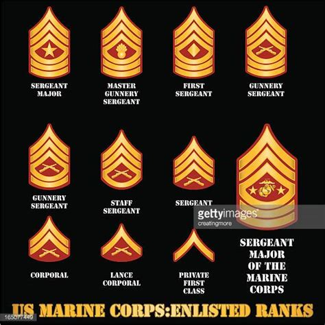 marine corps ranks armed forces rank stock illustrations and cartoons getty