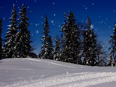 animated christmas trees with snow wallpapers animated wallpaper snow falling wallpapersafari