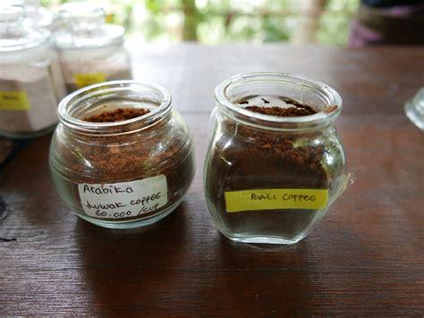 Luwak Coffee coffee luwak luwus bali indonesia nick s wanderings