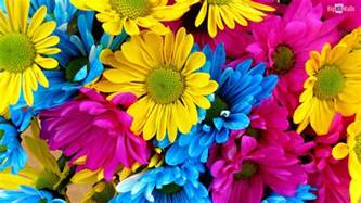 10 colorful hd desktop backgrounds bighdwalls
