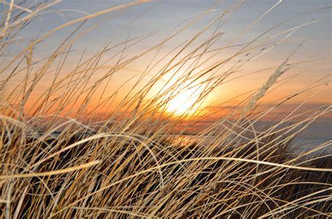 wohnkultur iserlohn fototapete strand wohnkultur strand meer sonnenuntergang