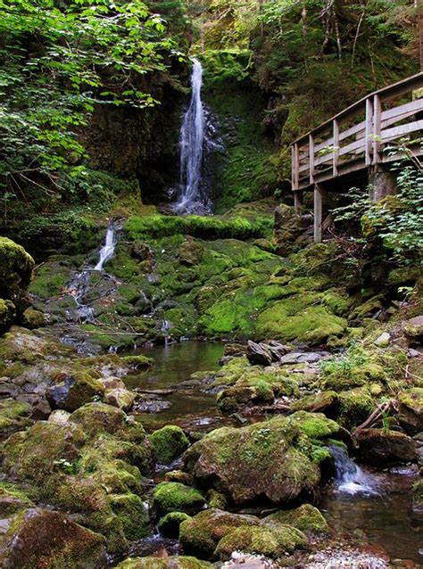 dickson falls in fundy national park new brunswick canada parks photos and canada on pinterest
