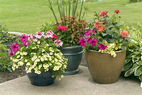 Outdoor Flower Pots Patio Design Outside In Homescaping Llc