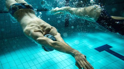 best swimmer image gallery swimmers