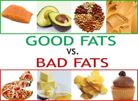 healthy fats nz sciblogs a week debates about saturated that
