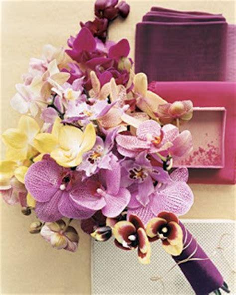 Nature Stek Bunga orchids flowers jenis jenis bunga anggrek