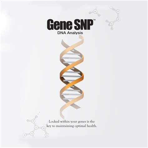 Gene Snp Detox Test by Genetic Analysis Health By Harvey