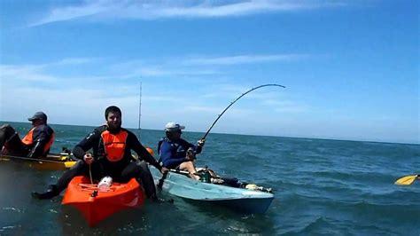 best pesca pesca de gran tiburon en kayak mar plata