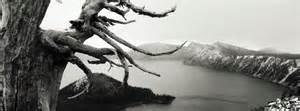 paysage noir et blanc 2 couverture