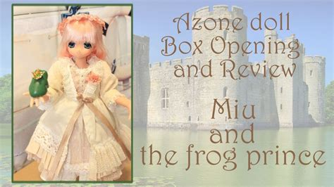 prince book report the frog prince book report writefiction581 web fc2