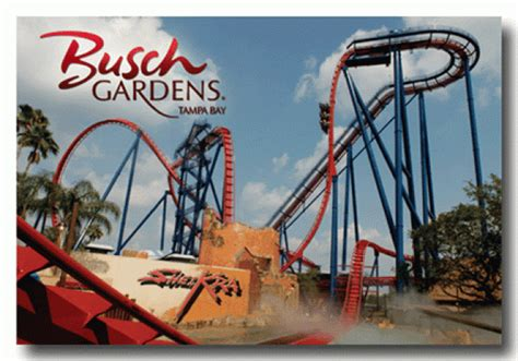 busch gardens florida s themed park smart