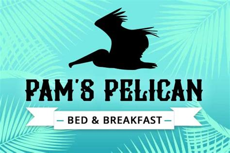 bed and breakfast outer banks coupons pam s pelican bed and breakfast outer banks nc