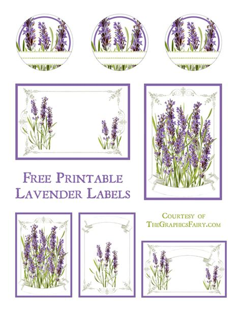 plant tag template plant tag template 28 images herbarium plant label