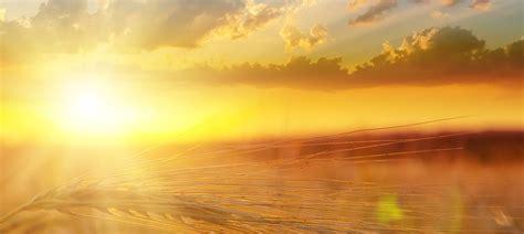 K 246 Nige Der Sonne Sonne Ins Leben Kranker Kinder Bringen Brot Und Geb 228 Ck Aus 214 Sterreich Haubis
