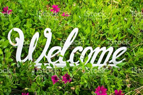 welcome images with flowers metal white welcome sign on flower background stock photo