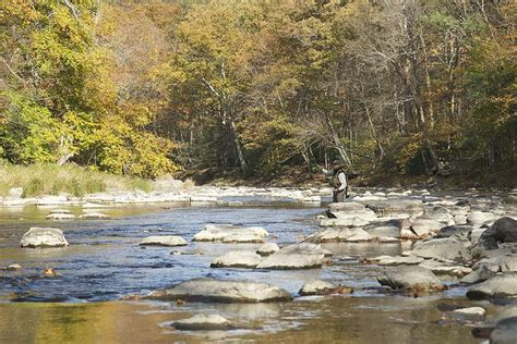 pa fish and boat class a wild trout fly fishing penns creek visitpennstate explore