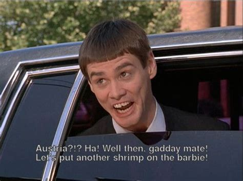 Dumb And Dumber Memes - 17 best images about dumb dumber on pinterest jim