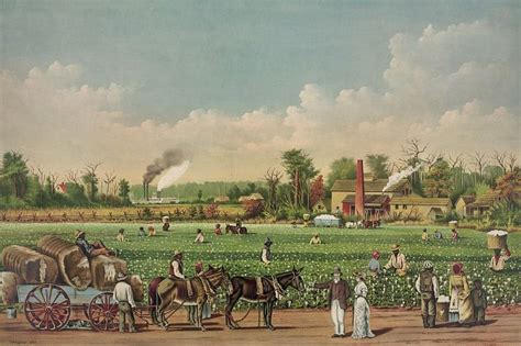 Planters In The South plantations in the american south