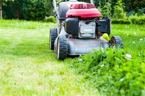 Peut On Tondre En Hiver by Comment Utiliser La Tonte De Gazon Au Jardin