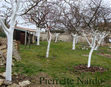 Chaux Vive Jardinage by Chaulage Des Arbres Floradiane Jardin Cuisine Beaut 233