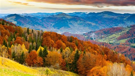 colorful hill nature landscape trees forest hill mountain sky