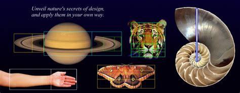 Best Home Design Software Free Download golden ratio powerpoint template phimatrix golden ratio
