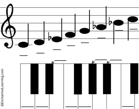 C Minor label the c minor scale printout enchantedlearning