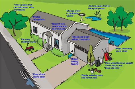how to control mosquitoes in your backyard how to control mosquitoes in your backyard 28 images