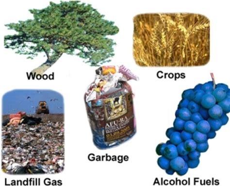 punjtan energy biomass